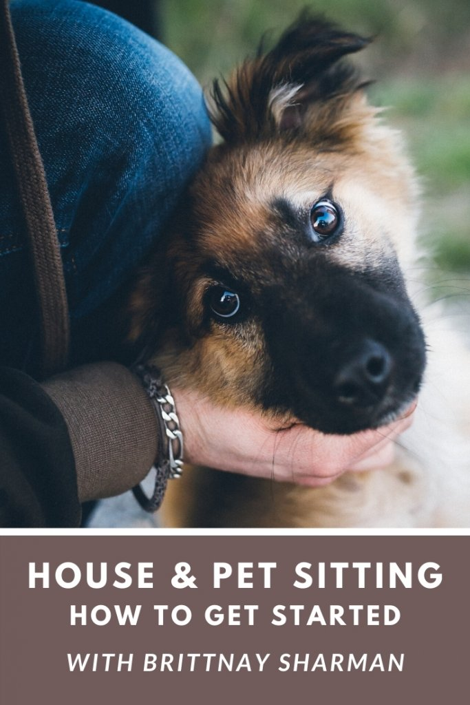 Best websites for finding house sits and pet sits.